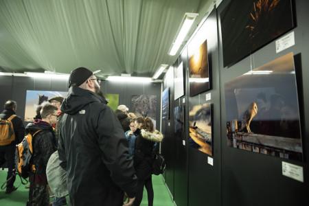 Concurso 2020 Exposicion